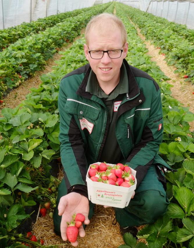 Bauer Appelbaum: Am 13. Juni können Erdbeeren gepflückt werden